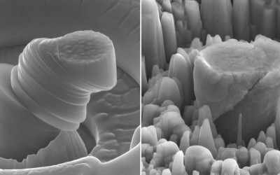 UCLA researchers create exceptionally strong and lightweight new metal